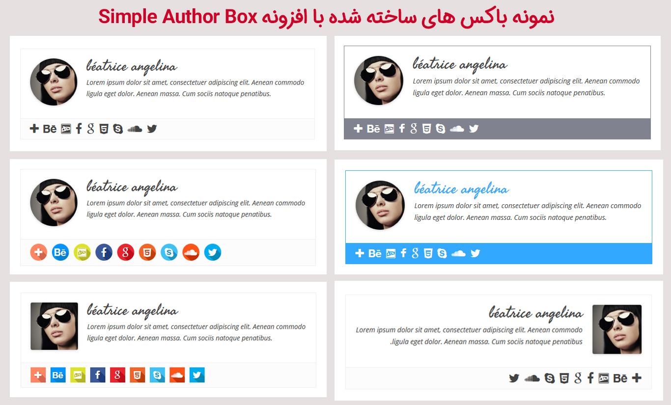 نمونه باکس با افزونه افزونه Simple Author Box